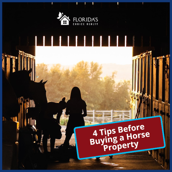 horse property ownership tips before you buy