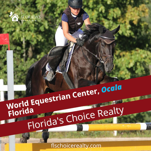 word equestrian center in Ocala fl